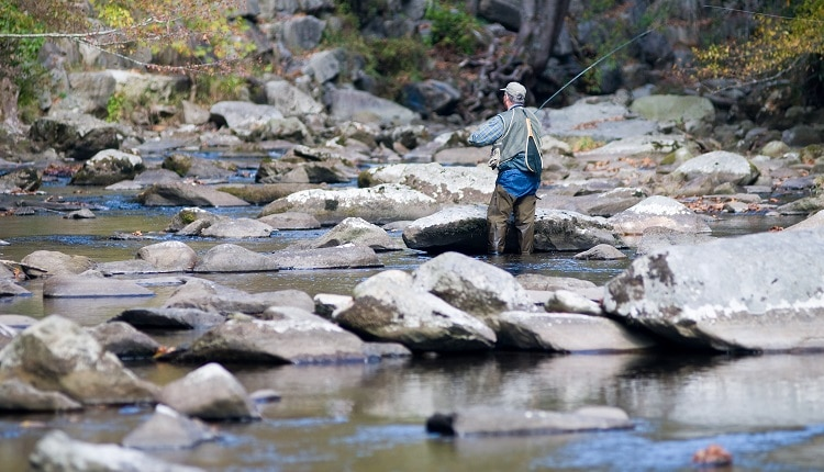 Fly Fishing in the Smoky Mountains National Park