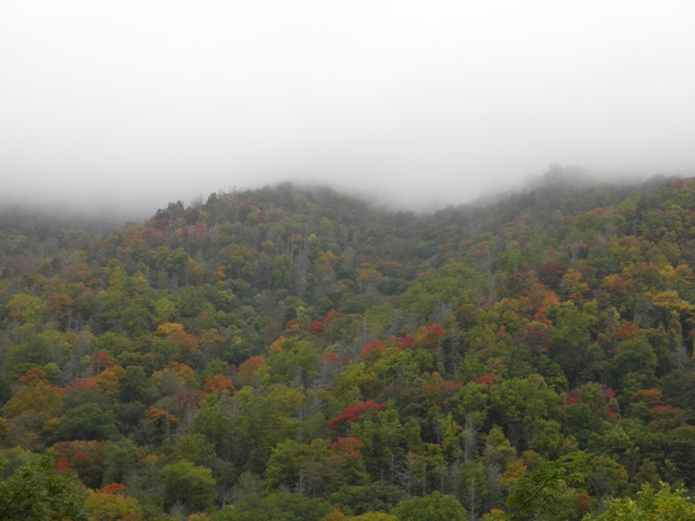 GSMNP Fall Foliage