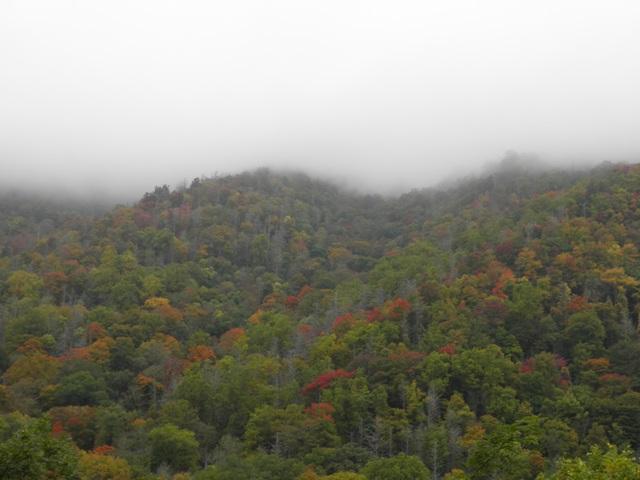 GSMNP Fall Foliage