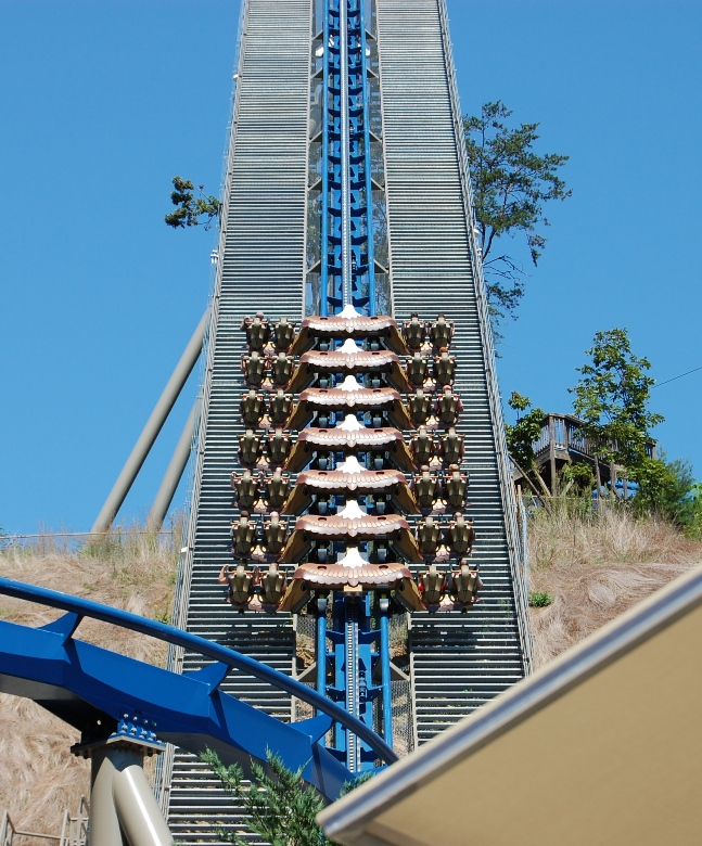 Dollywood Wild Eagle