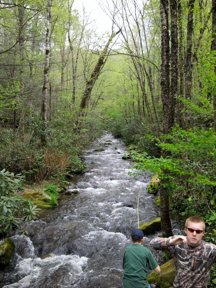 Fishing in the Smokies for 4-3-2014 River Image