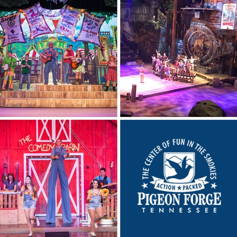 A Guide To Your Pigeon Forge Shows