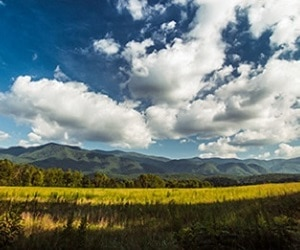 cades-cove-smoky-mountains-pigeon-forge-300×250