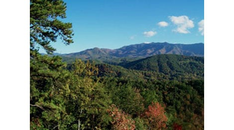 Affordable Cabins in the Smokies Main
