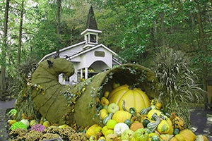 Chapel Dollywood 300×200