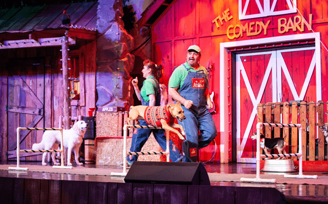 Dog Act at Comedy Barn Theater in Pigeon Forge TN