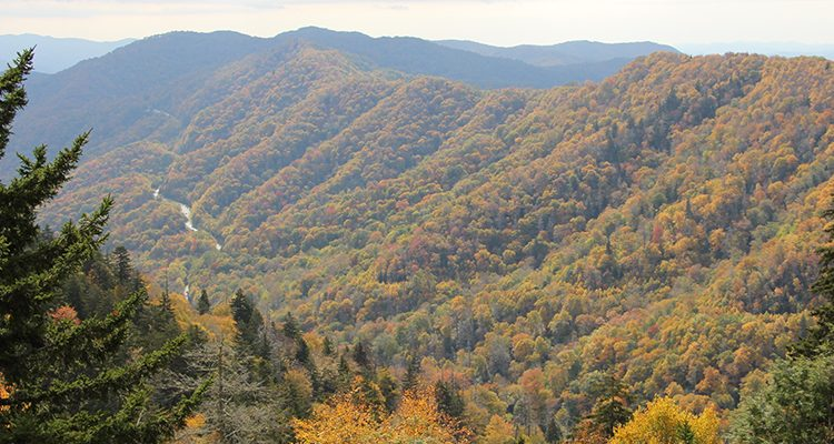 PF_SmokyMTNS_Tier2_HeaderGalleryImages_960x400_0001s_0002_IMG_1452