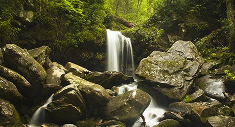 PF_SmokyMTNS_Tier2_InsetImages_460x250_0003s_0000_shutterstock_105623120