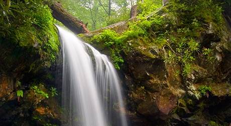 PF_SmokyMTNS_Tier2_InsetImages_460x250_0003s_0001_shutterstock_47713849