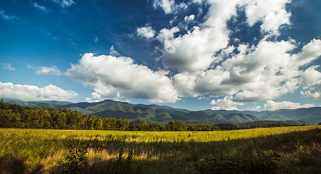 PF_SmokyMTNS_Tier2_InsetImages_460x250_0008s_0001_shutterstock_422773912