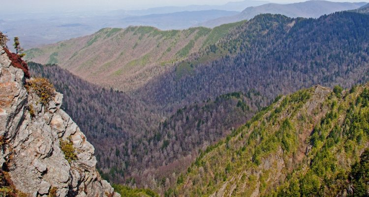 PF_SmokyMTNS_Tier3_HeaderGalleryImages_960x400_0018s_0000_Charlie's Bunion