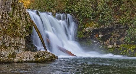 Smoky Mountain Fishing - Bass & Trout Fishing in The Smokies