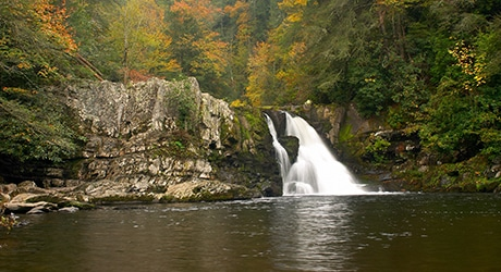 PF_SmokyMTNS_Tier3_InsetImages_460x250_0012s_0000_shutterstock_1404962
