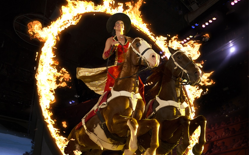 Roman Ride at Dolly Parton's Stampede