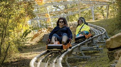 alpine-coaster-3