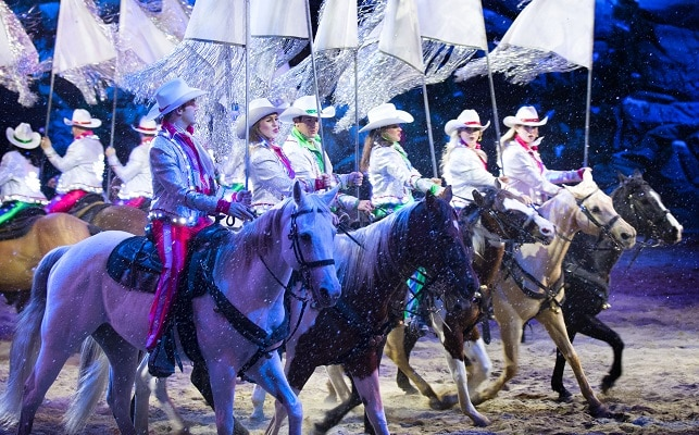 Christmas at Dolly Parton's Stampede - Horses in Snow