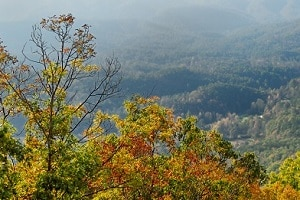 fall-in-the-smokies-300×200(1)