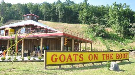 goats-on-the-roof-pigeon-forge