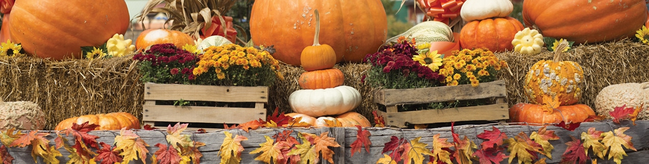 Thanksgiving Events - Pigeon Forge, TN