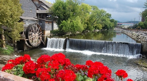 Old Mill with red flowers