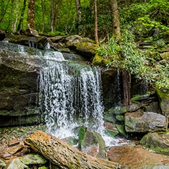 rainbow falls hiking trail pigeon forge