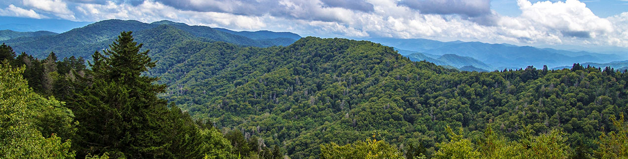 Trip Ideas for Pigeon Forge and the Smoky Mountains