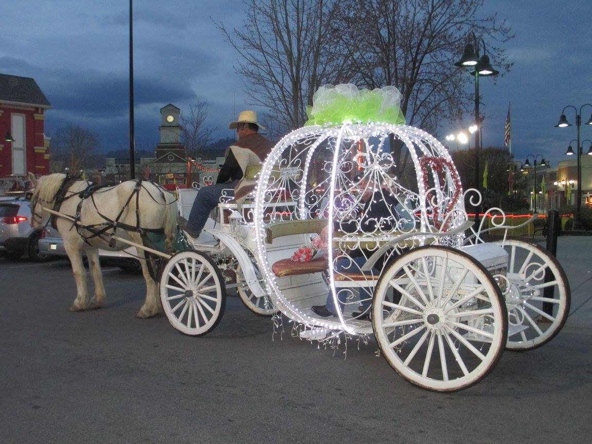 Heritage Carriage Rides in Pigeon Forge, TN