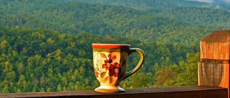 view-smoky-mountains-from-cabin-1271×322