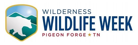 Wilderness Wildlife Week in Pigeon Forge TN