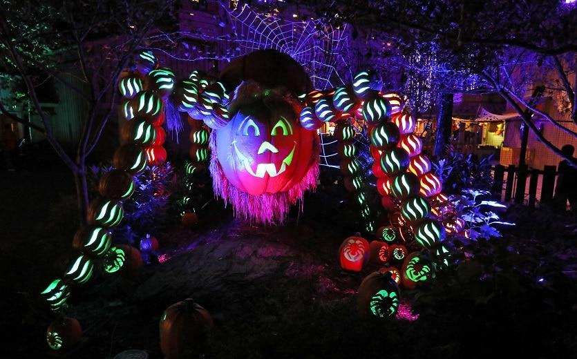 Spider at Dollywood's Great Pumpkin LumiNights