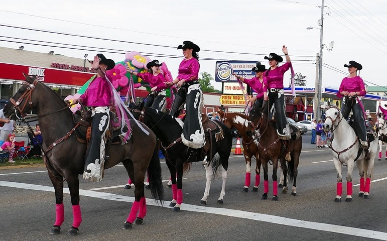 Horses and Riders at Music in the Mountains Spring Parade
