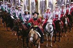 Christmas at dixie stampede pigeon forge tn