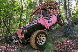 Pink Adventure Tours Pigeon Forge TN