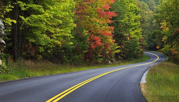 Scenic Drives in Tennessee's Smoky Mountains