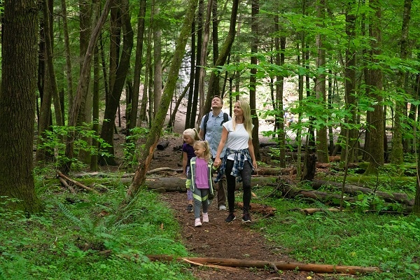 Labor Day Weekend Adventures in Great Smoky Mountains National Park