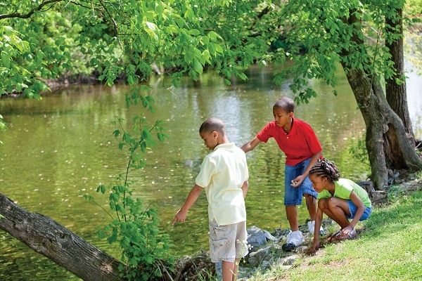 Fun and Free Things to Do on the Little Pigeon River