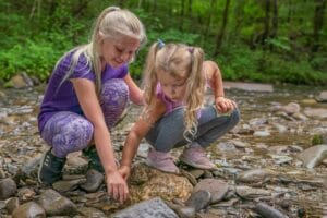 Explore Great Smoky Mountains National Park from Home