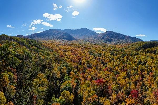 Smoky Mountain Fall Colors