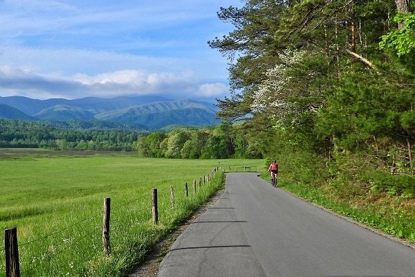 Visit Cades Cove in Great Smoky Mountains National Park - Free Things to Do in Pigeon Forge