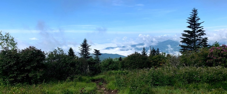 Andrews Bald Trail - Great Smoky Mountains National Park