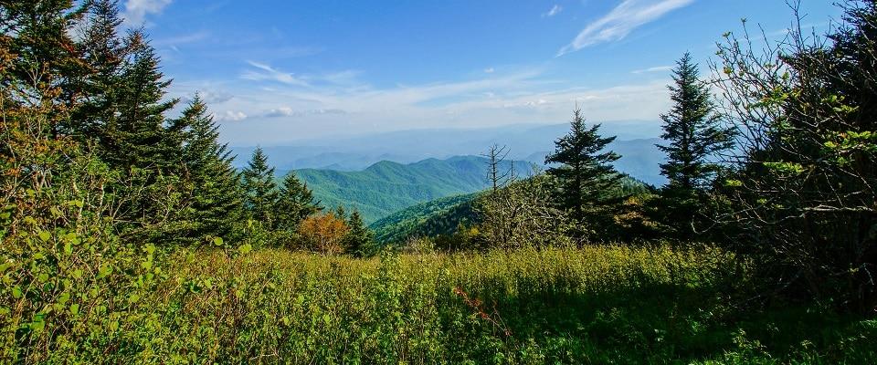 Appalachian Trail - Great Smoky Mountains National Park