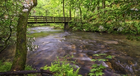 Bridge across Abrams Creek in GSMNP
