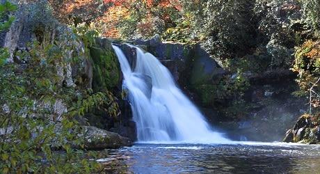 Abrams Falls in Fall