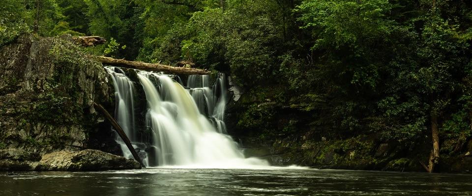 Abrams Falls Waterfall Hike