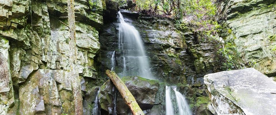 Hiking Baskins Creek Falls Trail