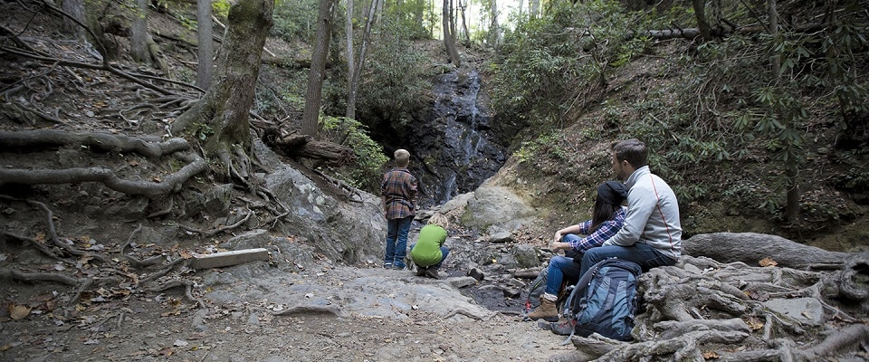 Family Waterfall Hike in the Great Smoky Mountains