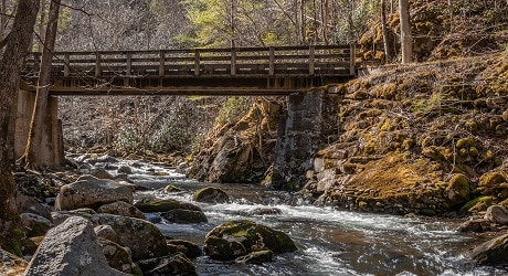 Hike the Middle Prong Trail to Indian Flats Falls in GSMNP