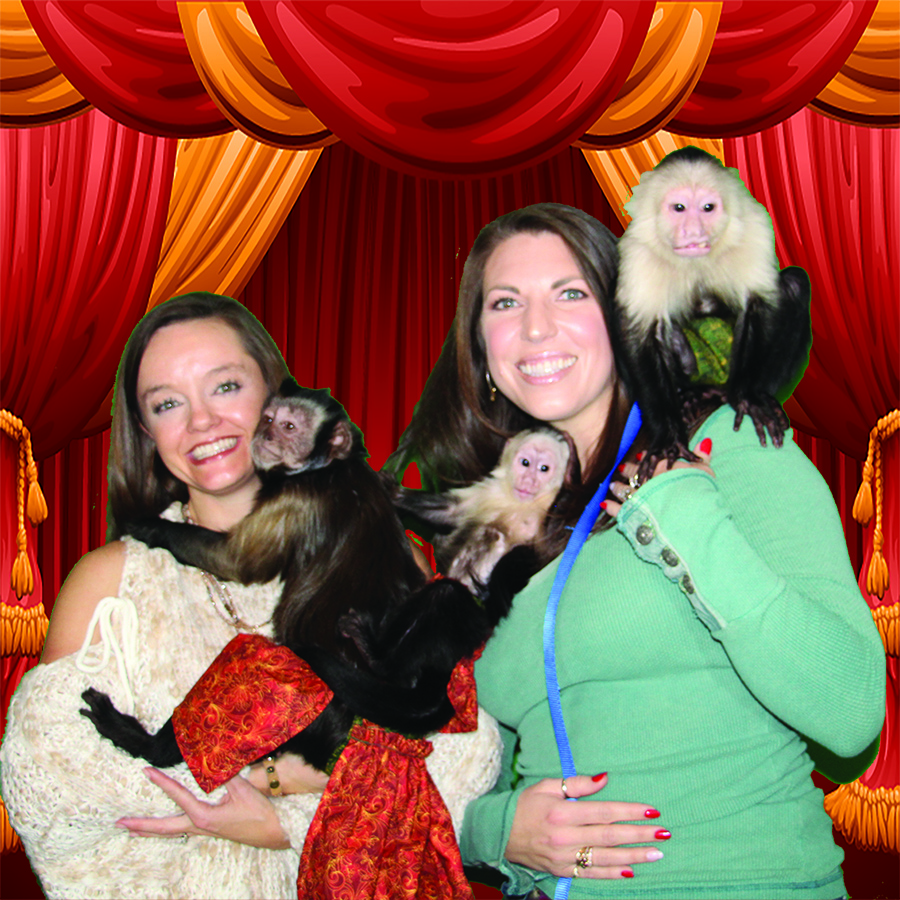 Get your photo taken at Three Monkeys Photo Emporium
